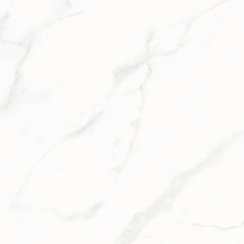 Badkamer Vloertegel Racer Hoogglans Marmerlook Carrara 60.8×60.8 cm (doosinhoud 1.80 m2) Aktie & Partij Tegels