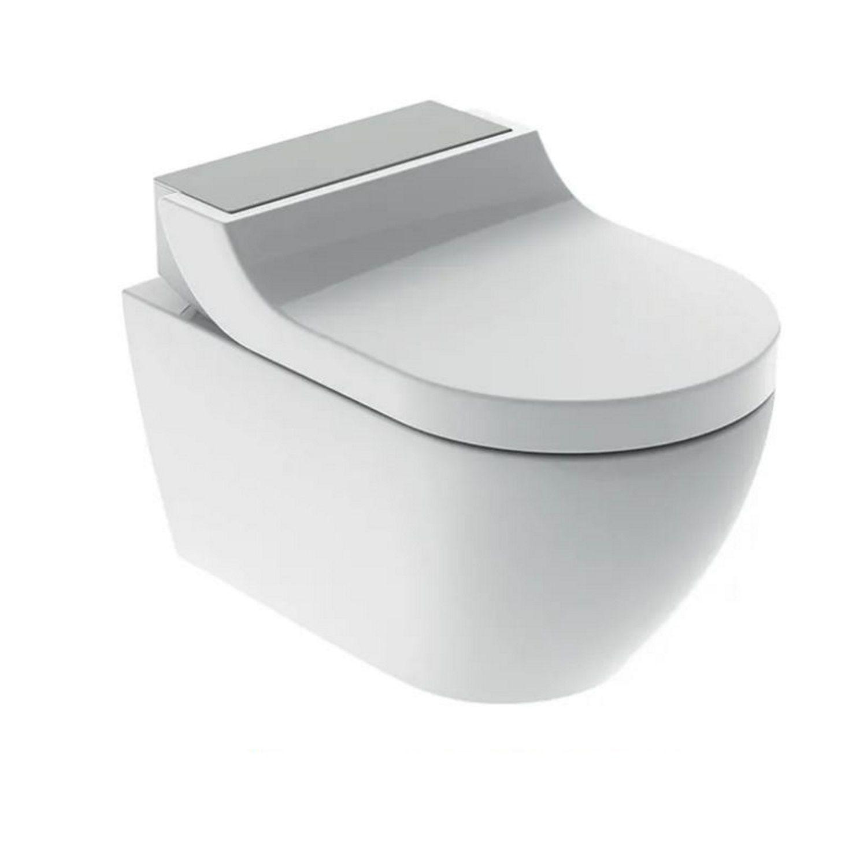 Toilet > Douche WC > Douche WC kopen? Douche WC Geberit AquaClean Tuma Comfort Compleet Rimfree Geborsteld RVS het voordeligst hier
