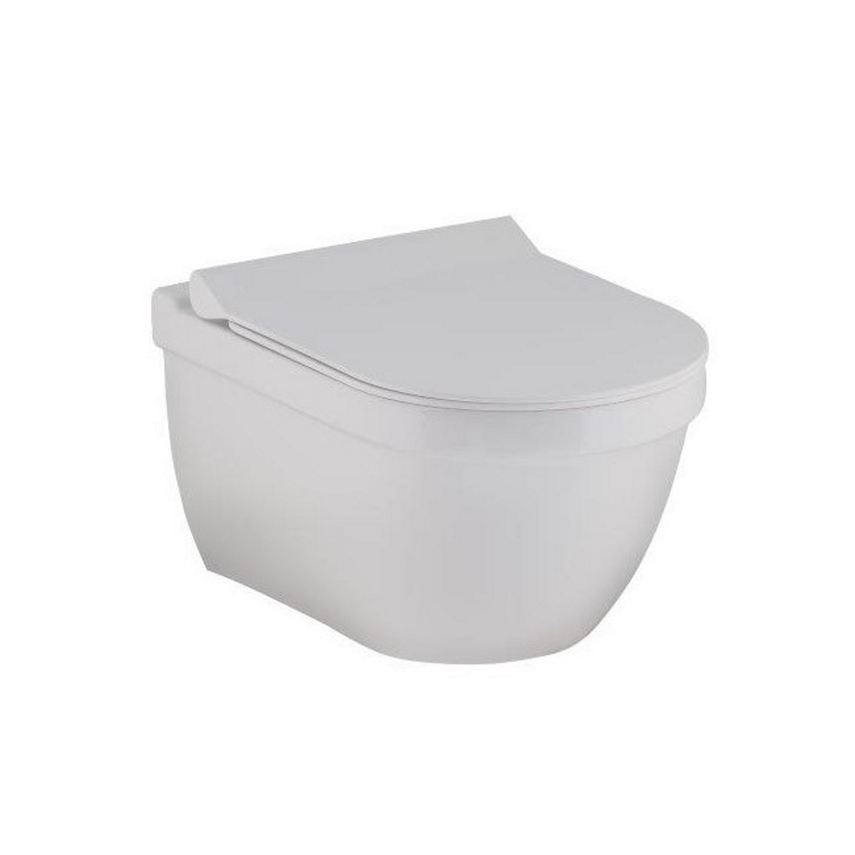 702582307821c0 Toilet   Hangtoilet   Hangtoilet. Wandcloset Terra Rim Inclusief Softclose  Slimline bril ...