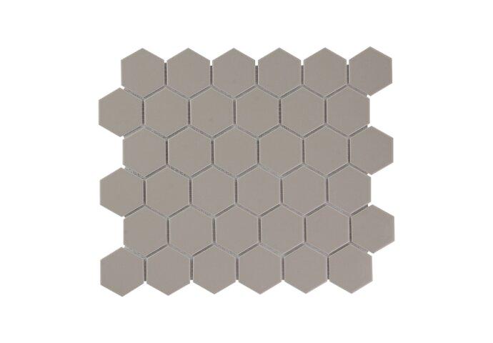 Mozaïek Barcelona 28.1x32.5 cm Geglazuurd Porselein Hexagon Glanzend Taupe (Prijs Per 0.91 m2)