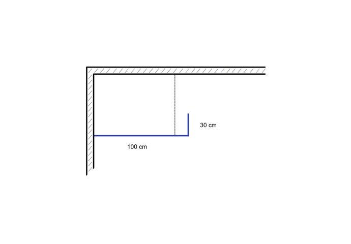 Inloopdouche met Draaibare Zijwand 100x30x200 cm 6mm Chroom